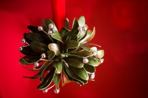 Under the Mistletoe! XL
